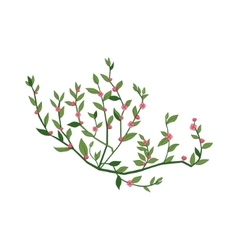 Tiny pink wild flower hand drawn detailed vector