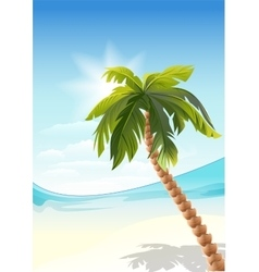Palm tree on beach white sand beach vector
