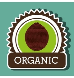 Organic food fruit icon vector