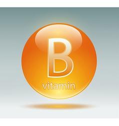 vitamin B vector image