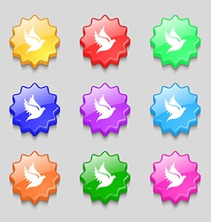 Dove icon sign symbol on nine wavy colourful vector