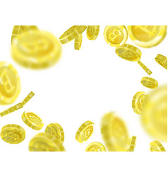 bitcoin of a realistic pattern vector image
