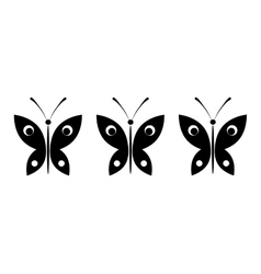 butterflies on a white background vector image vector image