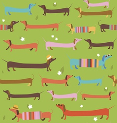 Cute dachshunds seamless pattern vector