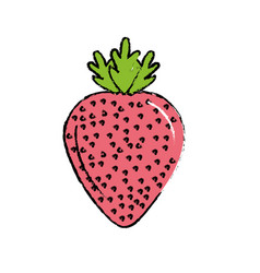 Delicious and healthy strawberry fruit vector