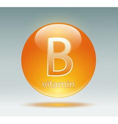 vitamin B vector image vector image