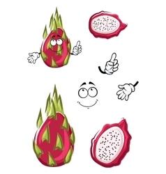 Cartoon pink pitaya or dragon fruit vector