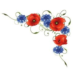 Poppies cornflowers vector