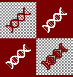 The dna sign bordo and white icons and vector