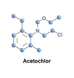 Acetochlor herbicide chloroacetanilide vector