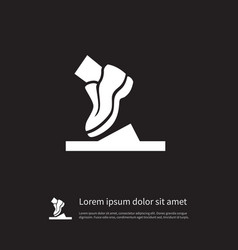 isolated shoelace icon running element can vector image