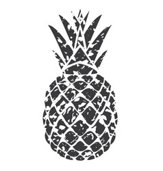 pineapple grey grunge vector image vector image