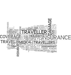 A short guide to travel insurance text word cloud vector