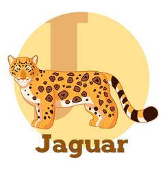 Abc cartoon jaguar vector