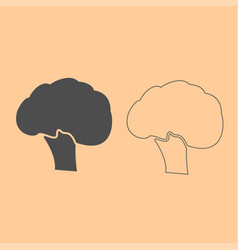 Broccoli dark grey set icon vector