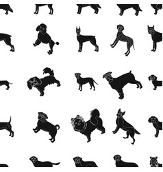dog pooch breed and other web icon in black vector image vector image