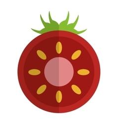 half tomato icon vector image