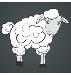 of sheep vector image