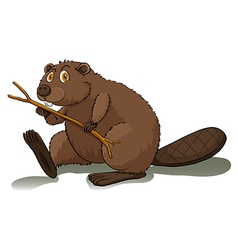 An eager beaver vector