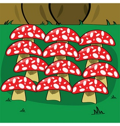 mushrooms in forest vector image vector image
