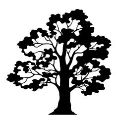 Oak Tree Pictogram Black Silhouette and Contours vector image