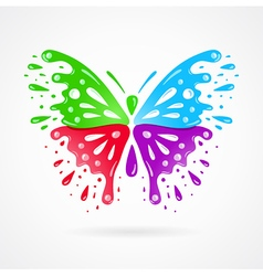 Butterfly colorful splash drops vector
