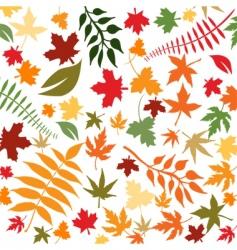 flower64 vector image vector image