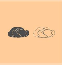 fried chicken dish dark grey set icon vector image vector image