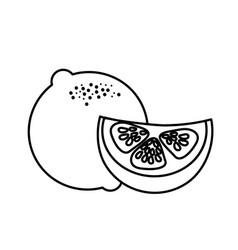 Line fresh lemon with slice organ fruit food vector