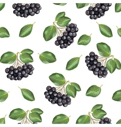 Seamless pattern with rowan vector image
