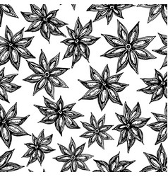 Anise star seamless pattern drawing hand vector