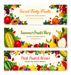 Fruits and berries farm banners templates vector