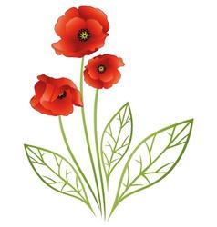 Flowers tendril poppies vector