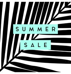 Summer sale poster design vector