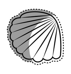 sea shell isolated icon vector image
