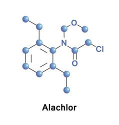 Alachlor herbicide chloroacetanilide vector