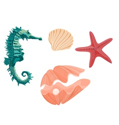 Collection marine life seahorse starfish and seash vector