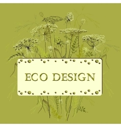 Green herbs floral background and eco label vector