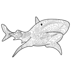 Shark Coloring for adults vector image vector image