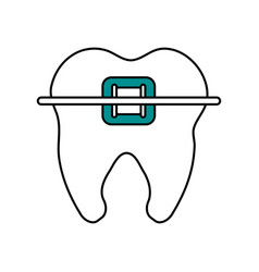 Color silhouette cartoon orthodontic tooth vector