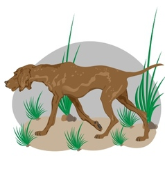 Dog on the prowl vector