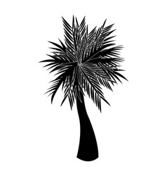 single palm tree icon image vector image