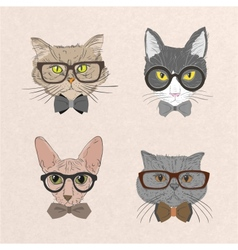 Collection of hipster cats vector image