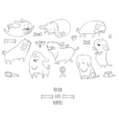 Cute little puppies set in various poses jumping vector