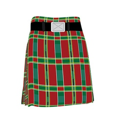 Traditional scottish kilt vector image