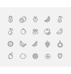 Set of outline stroke fruit icon vector