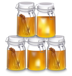 Honey jar realistic cinnamon vector