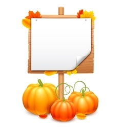 Bunch of pumpkins and signboard vector