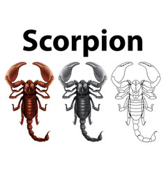 Doodle character for scorpion vector