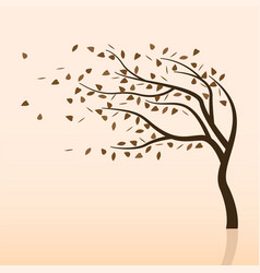 fall storm and tree vector image